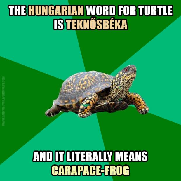 daily_magyar_2016_09_30